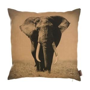 Povlak na polštář Apolena Elephant