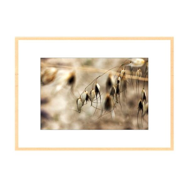 Jedna přes, autorská fotografie Borise Stojanova (přírodní olšový rám)