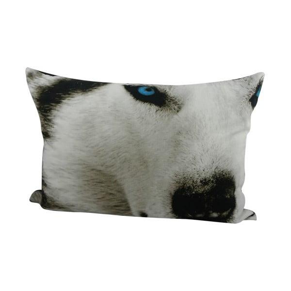 Polštář Sepia Wolf 50x35 cm