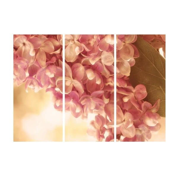 3dílný obraz Celoroční jaro