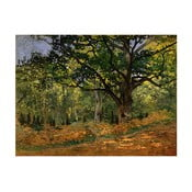 Obraz Claude Monet - The Bodmer Oak, Fontainebleau Forest, 70x50 cm