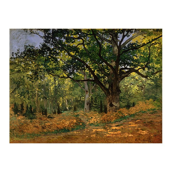 Reproducere pe pânză după Claude Monet - The Bodmer Oak, Fontainebleau Forest, 70 x 50 cm