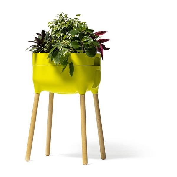 Vas pentru cultivarea plantelor Plastia High Urbalive, înălțime 77 cm, verde