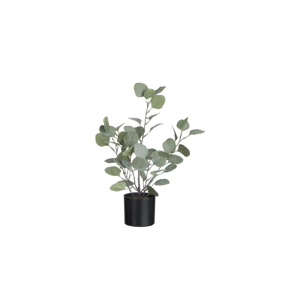 Umělá dekorativní rostlina v květináči J-Line Eucalyptus