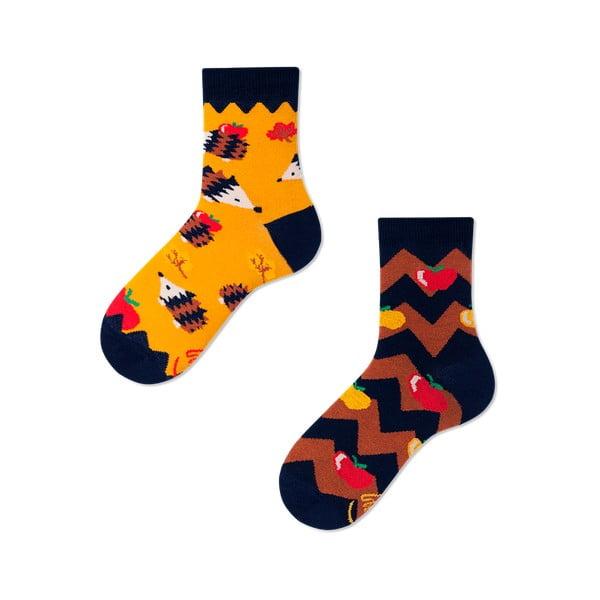 Dětské ponožky Many Mornings Apple Hedgehog,vel.23–26
