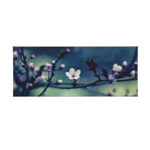 Obraz Graham & Brown Petite Petals, 100 x 40 cm