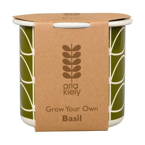 Květináč se semínky bazalky Orla Kiely Grow Your Own