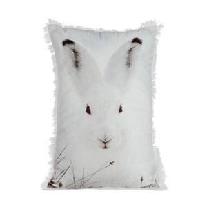 Polštář Rabbit Velvet, 30x45 cm