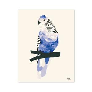 Plakát Michelle Carlslund Blue Bird, 50x70cm
