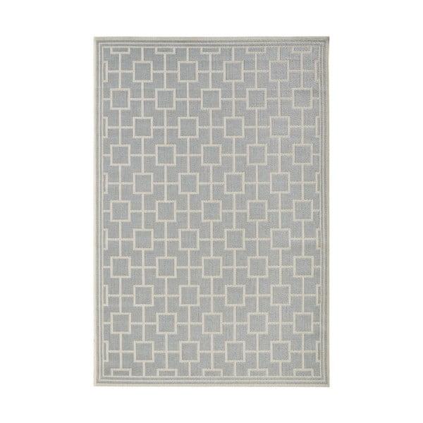 Koberec vhodný i na ven Botany 160x230 cm, šedý