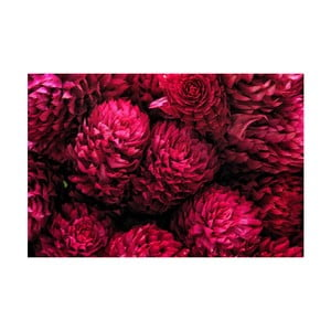 Fotoobraz Růžové květy, 90x60 cm