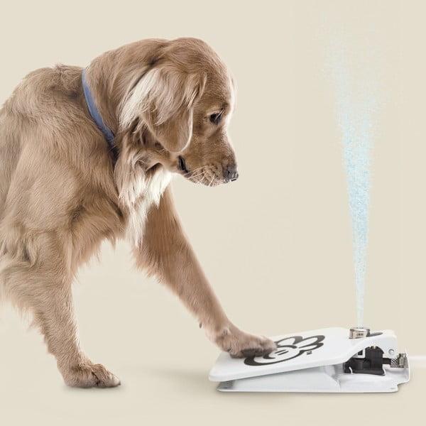 Fântână / pedală de băut pentru câini InnovaGoods