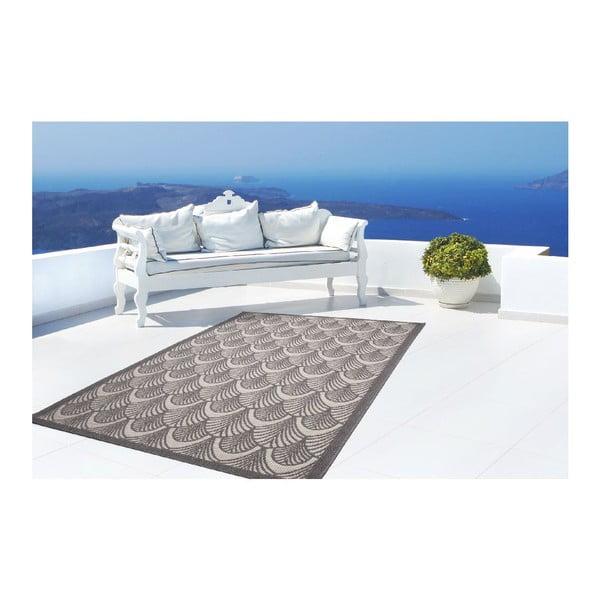 Koberec Tropical 370 Grey, 120x170 cm