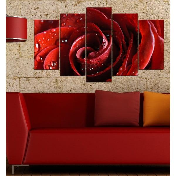 5dílný obraz Rudá růže