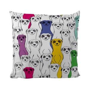 Polštář Group Of Meerkats, 50x50 cm