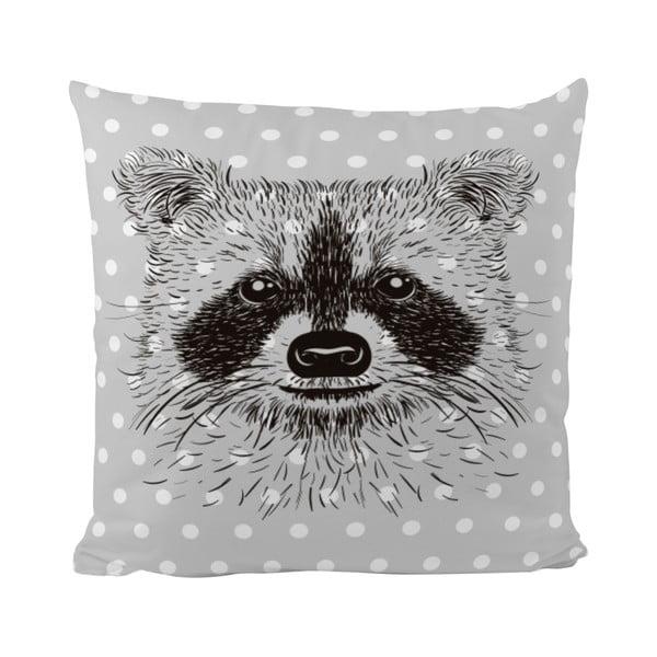 Polštář Raccoon Friends, 50x50 cm