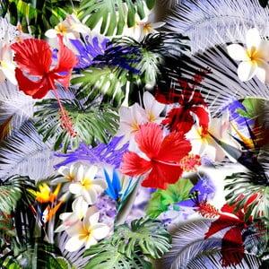 Obraz Novita Tropical
