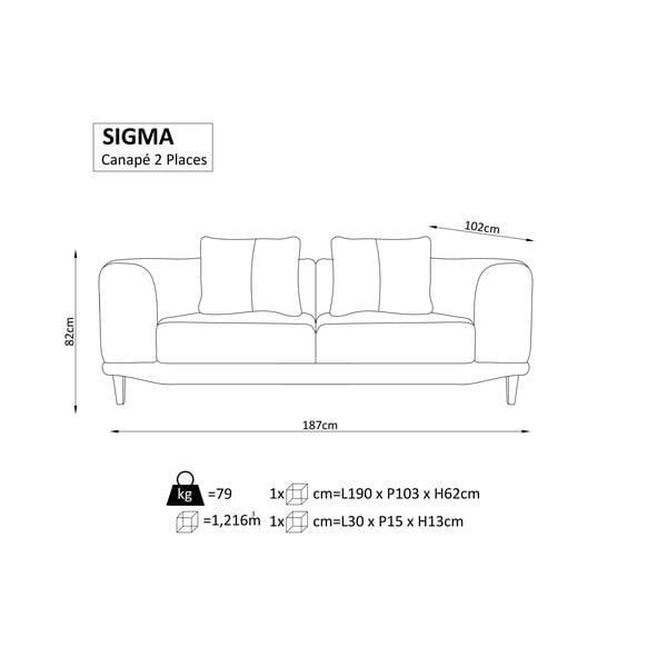 Tmavě šedá dvojmístná pohovka Windsor & Co Sofas Sigma
