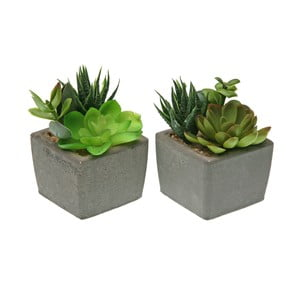 Sada 2 květináčů s umělými rostlinami Versa Plant