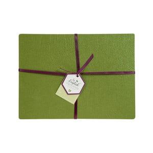 Sada 4 zelených prostírání z lepené kůže David Mason Noble