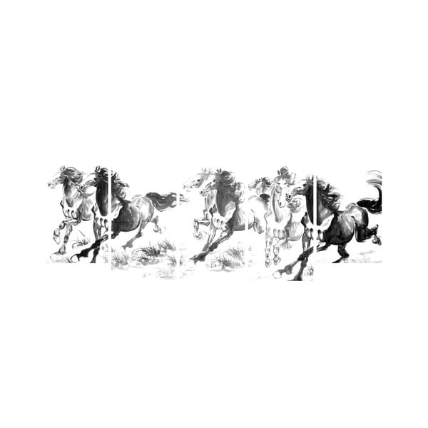Vícedílný obraz Black&White no. 30, 100x50 cm