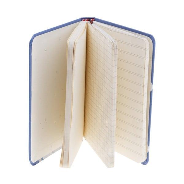 Zápisník Miomi, modrý
