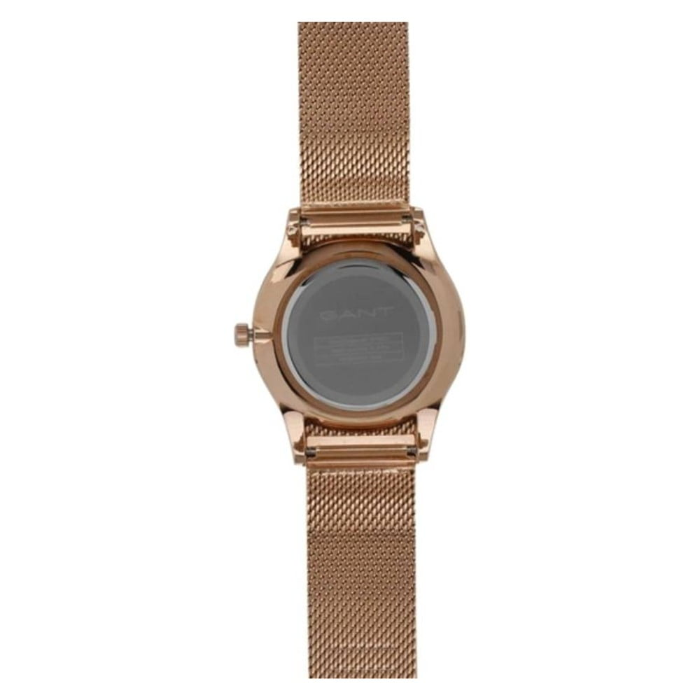 a2295a5f9 Dámské hodinky GANT Blake Lady | Bonami