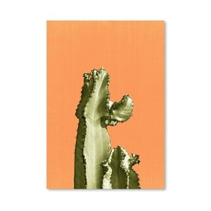 Plakát Cactus On Orange