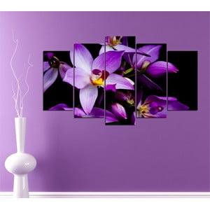 5dílný obraz Fialová orchidej