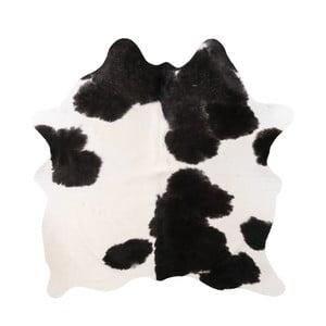 Černo-bílá pravá hovězí kůže Arctic Fur Nero Creamy, 142 x 186 cm