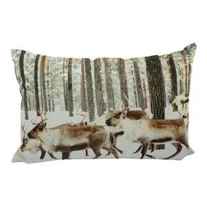 Polštář Winter Reindeer  60x40 cm