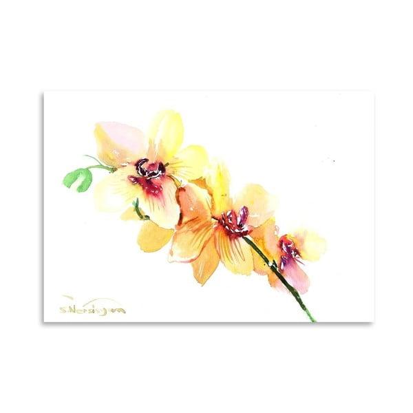 Plakát Peach Orchids od Suren Nersisyan