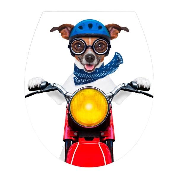 Biker Dog fehér duroplast könnyen nyitható WC-ülőke - Wenko