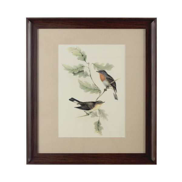 Obraz Birds in Brown, 55x62 cm