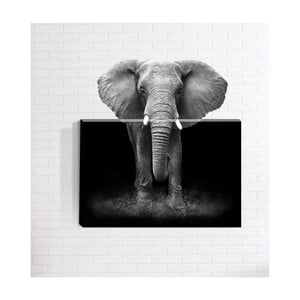 Nástěnný 3D obraz Mosticx Afrika, 40 x 60 cm