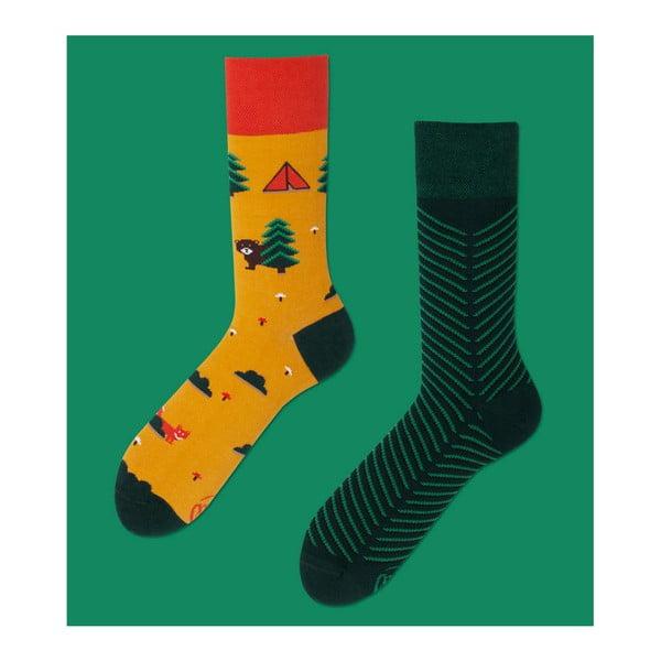 Ponožky Many Mornings Scout Memory, vel. 39/42