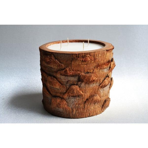 Palmová svíčka Legno s vůní vanilky a pačuli, 200 hodin hoření