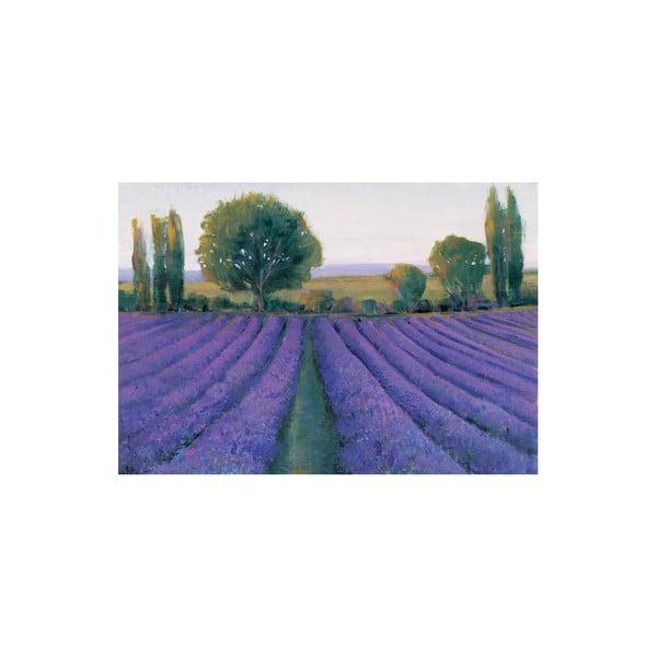 Obraz Lavender Field, 80x115 cm