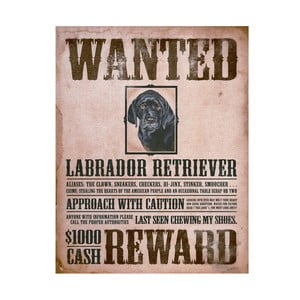 Plechová cedule Wanted