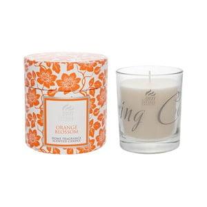 Vonná svíčka Spring v dárkovém balení 40 hodin hoření, aroma pomeranč