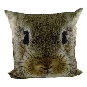 Polštář Rabbit, 50x50 cm