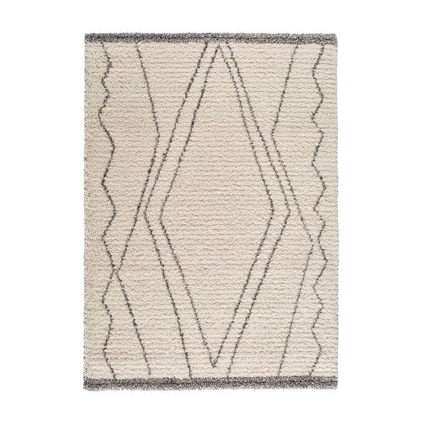 Focus Cashio szőnyeg, 60 x 110 cm - Universal
