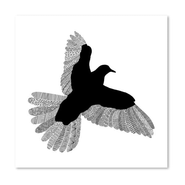 Plakát Bird White od Florenta Bodart, 30x30 cm