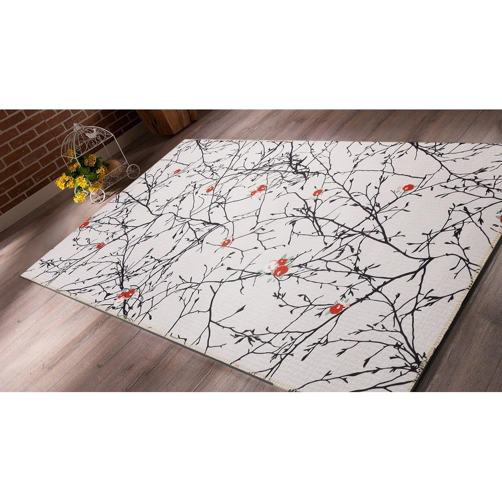 Odolný koberec Vitaus Parvati, 80 x 150 cm