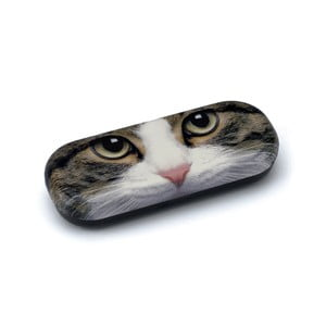 Obal na brýle Tabby Cat