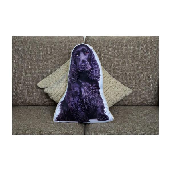 Polštářek Adorable Cushions Kokršpaněl