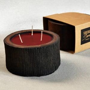 Palmová svíčka Legno Cera s vůní exotického ovoce, 40 hodin hoření