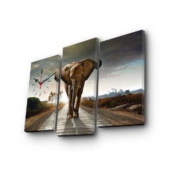 Ceas de perete cu imagine Slon, 66 x 45 cm