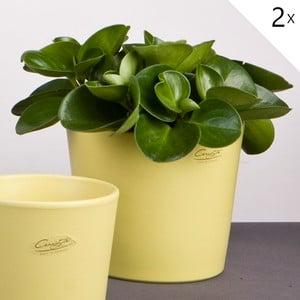 Sada 2 zelených květináčů Matt, 19 cm