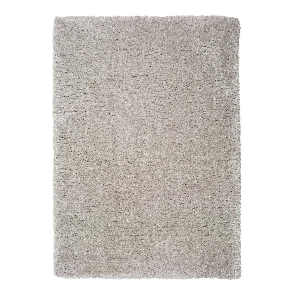 Produktové foto Šedý koberec Universal Floki Liso, 200x290cm